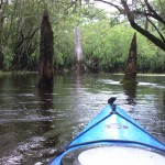 View from my kayak in the Three Sisters