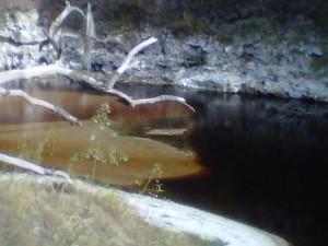 Sandbar along the Suwannee River